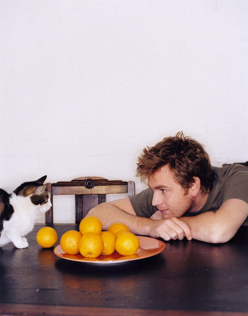 cuteboyswithcats:  ewan mcgregor (and cat) -pizzatarian