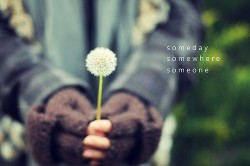 quote-book:  hit-or-miss:  insidemyuniverse:(via everythinglove)   someday, somewhere, someone