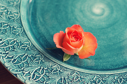 an orange rose lascatola20:Orange rose on turquoise plate (by ♥ Moa Maria)