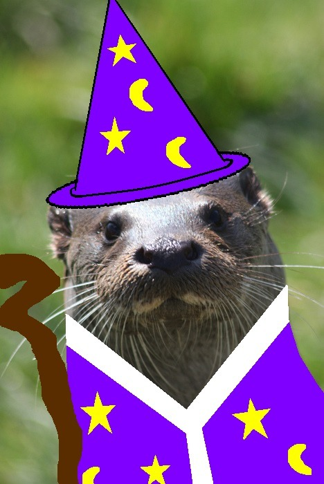 Does anyone want to get together and play a little D&D?  Wizard Otter is looking for a game, and he will totally BYO-12-sided die.  He has recently ascended to level 11, and he is looking for an opportunity to display his quarterstaff and alchemy skillz.  Anyone who is interested in a game can contact him through ICQ or Friendster.  Later nerds.    Original otter via