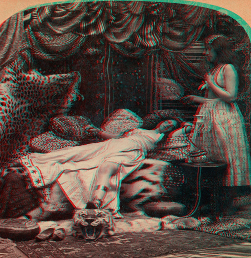 "akubizone:ANAGLYPH, conversion of original stereoview in my collection. ""2491.  The Sultan's Favorite."" copyright 1901 by George W. Griffith. Griffith & Griffith"