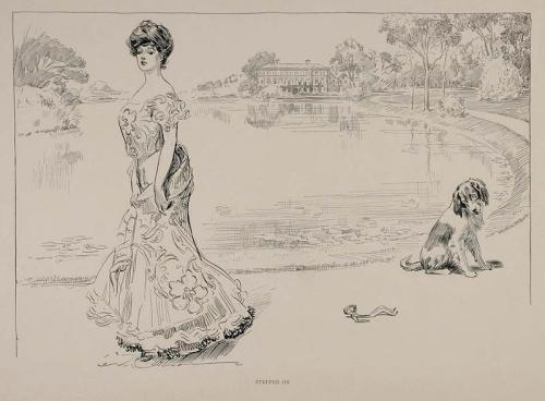 Charles Dana Gibson ~Stepped on,1901