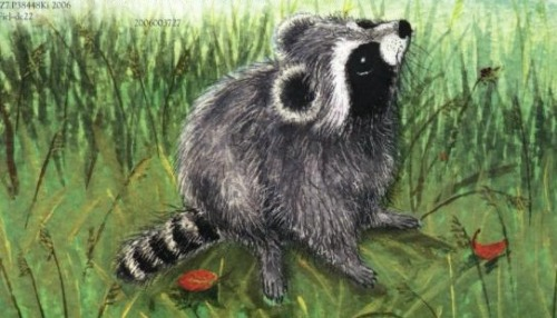 pamplemoussi:  The Kissing Hand is one of my favourite kids books that I discovered long after it was acceptable for me to like kids books. It's about a raccoon named Chester and how he doesn't want to be away from his mother all day at school. It makes me quite irrationally happy, much like Henry in Love. If anyone can figure out what kind of a job I can get that involves children's books that isn't writing them or working in a bookstore, I would be eternally grateful.  Maybe you could…test them? Having nieces and nephews is so good for secretly buying childrens books for myself.