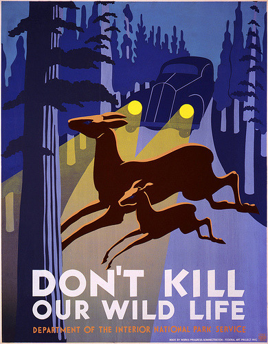 vintageillustration:  Don't kill our wild life, WPA poster, ca. 1938 (by trialsanderrors)