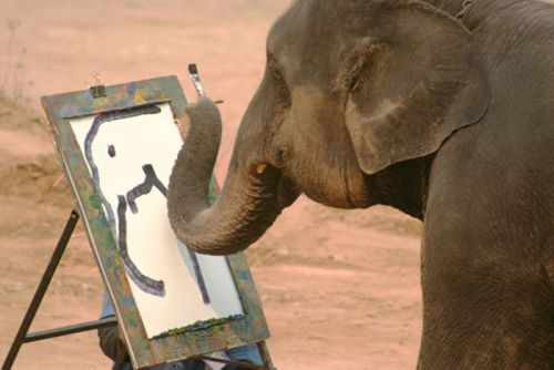 animalinsider:  An elephant paints an elephant…