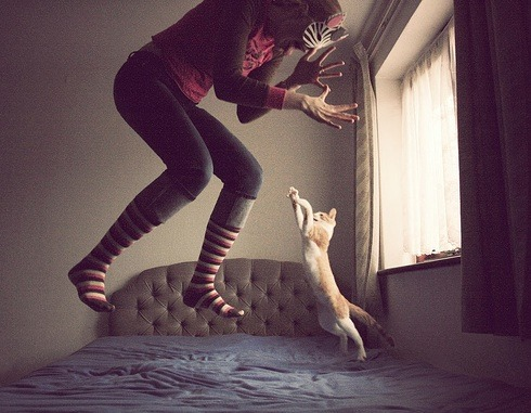 uncivilized:  photojojo:  Surreal photos of a girl…and her cats. http://www.oladios.com/  love this! lol  The site itself makes me smile.