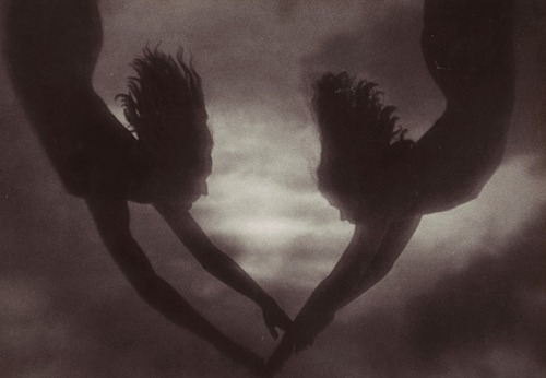 billyjane:  Leni Riefenstahl ~Untitled [Olympia] 1937 [also] via Luminous-Lint