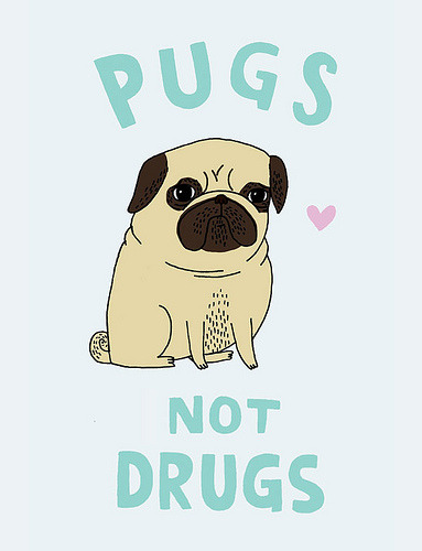 mugsofpugs:  pugs not drugs by gemma correll