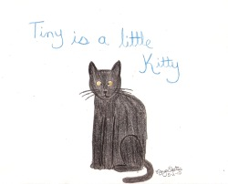 Day 13: Tiny Is A Little Kitty