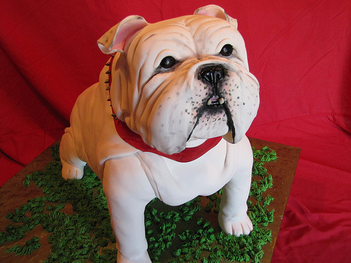 "Bulldog Cake (""This Bulldog Cake was HUGE! It fed about 75 people and was almost entirely cake - including the face"")"