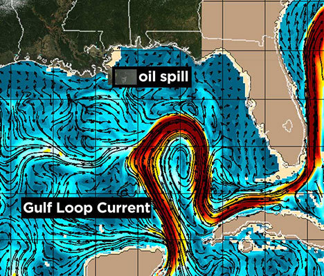 ryking:  notthatkindagay:  josephleonardo:  What's the Gulf Loop Current and How Could it Spread the BP Oil Spill to Florida and Beyond? This right here is what you should be absolutely terrified of.