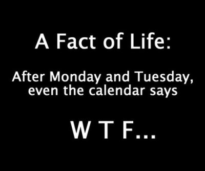 m:  cafe:  9gag:  A Fact of Life