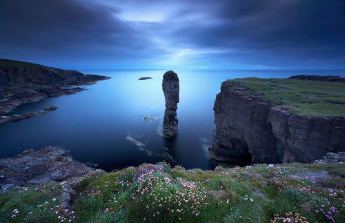 landscapelifescape:  Yesnaby Stack with sea pink, Orkney Islands, Scotland via cache.foxsaver.com