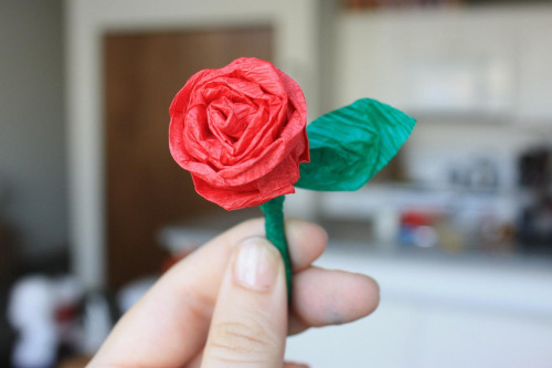 I can't get over how adorable  and simple these little crepe paper roses are. They take so little time  and effort and even so little material! And yet they look totally  great. I used this tutorial, which is a video of a woman making  them while preschoolers help her out, and they are pretty painfully  cute. If I'd seen my mom yesterday, I would have loved to give her a tiny  bouquet of these with her Mother's Day gift.