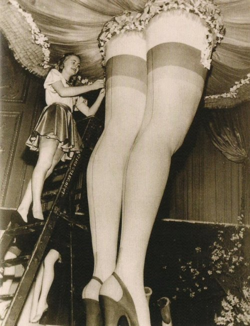 cinnamonspider:  (via surrealistkitsch) Nice stems!