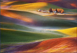 Palouse Hills, Washington State by Chip Phillips