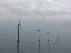 Offshore Wind, Not Offshore Oil : TreeHugger