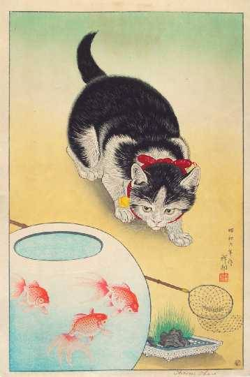 "indigodreams:  ""Cat and Three Goldfish"", Koson (Shoson OHARA) (1877-1945)"