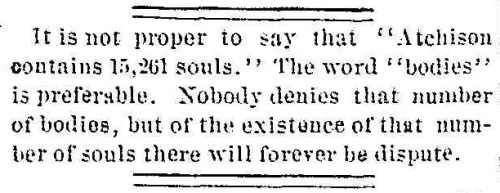 my-ear-trumpet:  yeoldenews:  Your daily dose of Victorian snark. (source: The Atchison Globe, July 7, 1880.)