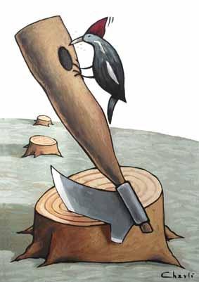 Charli Fuentes, http://charlifuentes.wordpress.com/ … vía brotes-brotes-brotes:El pájaro se vuelve loco sin su casa. (Robando a Charli Fuentes) 2010-06-05