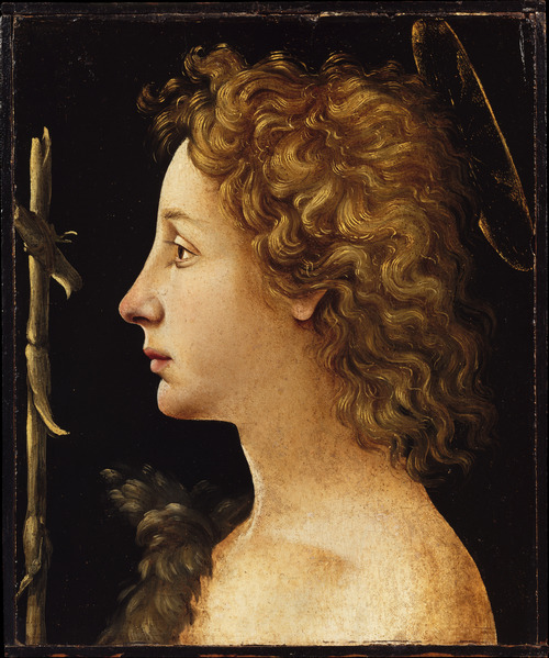malebeautyinart:  The Young Saint John the Baptist. Piero di Cosimo (1462–1522). Tempera and oil on wood  Oh my god, I am in love with the hair on this.