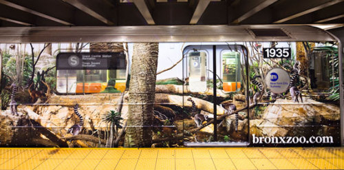 Stephen Wilkes' Bronx Zoo train wrap on the Shuttle train in NY!