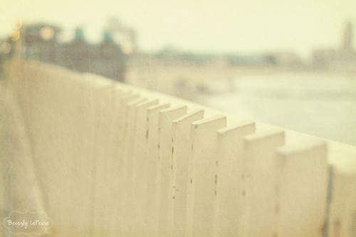 beach fence (by bal93)