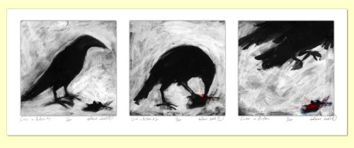 "TRASH BIRDS SERIES - ""A Crow in Action"" (1-3) Resume/Bio: http://www.linkedin.com/in/tanyamcclure Direct Link:  http://tanyamcclure.tumblr.com/post/620120218/crowinaction"