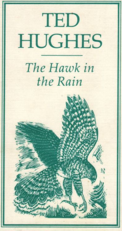 The Hawk in the Rain, Ted Hughes, illustration by Sue Scullard