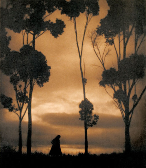 turnofthecentury:  billyjane:Storm Clouds by Karl Struss,1921