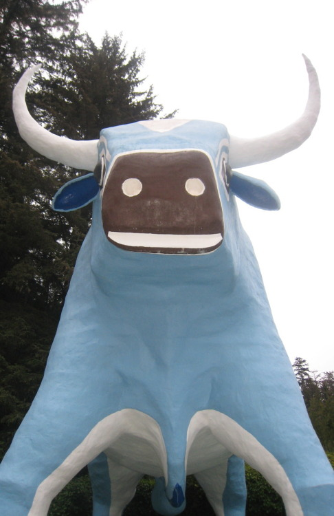 Babe the Blue Ox at the entrance to the Trees of Mystery.