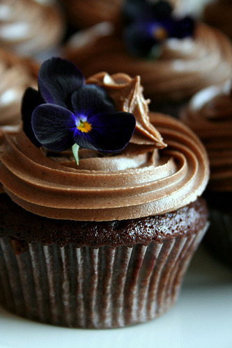 Chocolate Cupcakes (by Seitti)