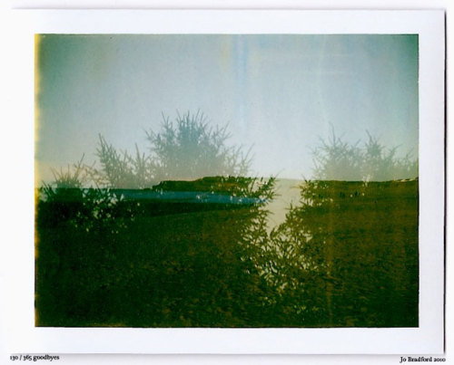 Day 130.  Cornwall, UK. Polaroid Land Camera 240 and 125i film (expired 12/2007). (Polaroid photograph, all rights reserved, copyright: Jo Bradford 2010