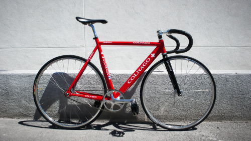 Gorgeous Colnago Dream Pista, the Swiss Team edition.  Belongs to Don Alrey's bro.