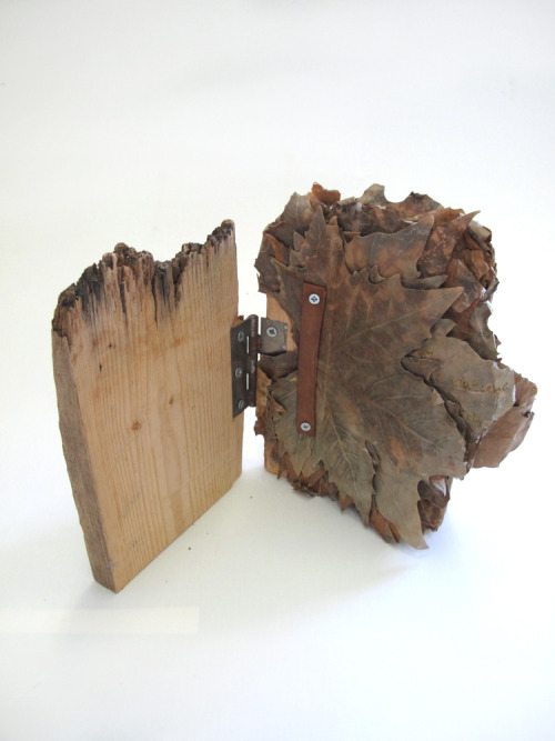 "readingroom2010:   Lexi Hayman ""Wood Book Object"" (39)"