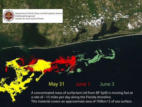 Oil locations off the coast of Florida as of June 3, 2010.
