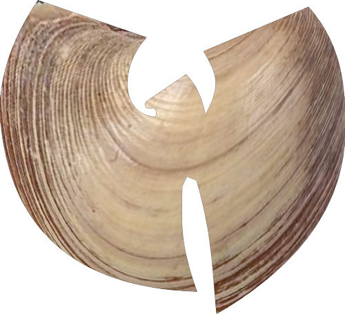 get it wu-tang clam