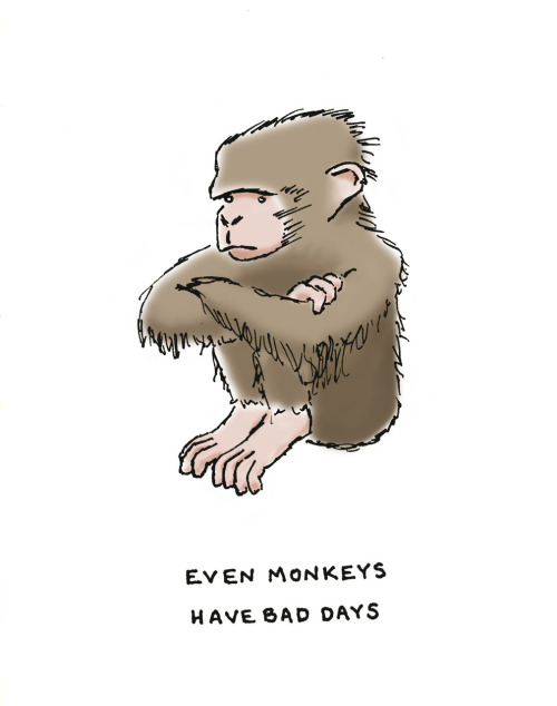 even monkeys have bad days.