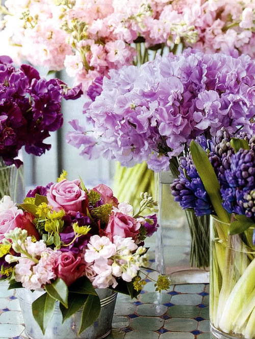 Wednesday Flowers!!