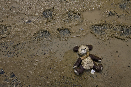 BROWN BEAR: A teddy bear lay in the mud in the flooded village of Wilkow, Poland, Monday. (UPPA/ZUMA Press)