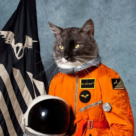 Who cares what the new Klaxons album sounds like! This is the best album art since It's Blitz!