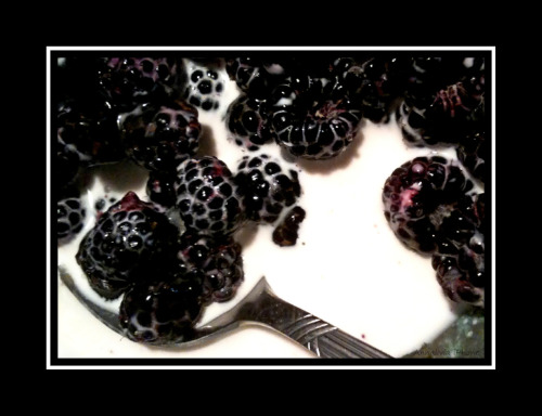 Black raspberries with cream, and honey.