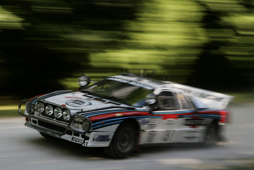 automotivated:  sharonov:  Goodwood 2009