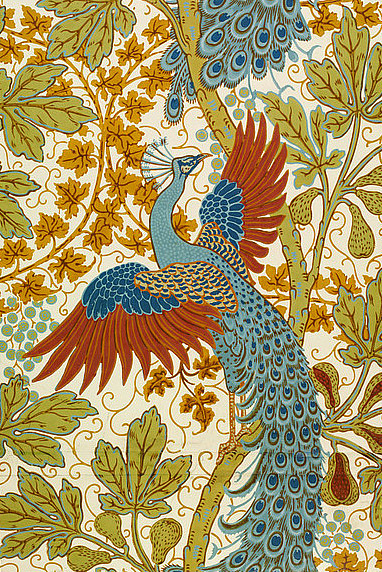 Walter Crane Fig and Peacock 1895