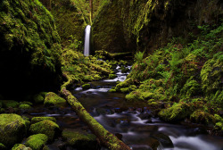 Columbia River Gorge, Oregon, USA by outabounds