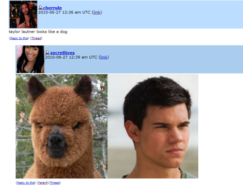 velocistar:  ontd-shit-balls:  (Submitted by radioapples)   Lol alpaca XD