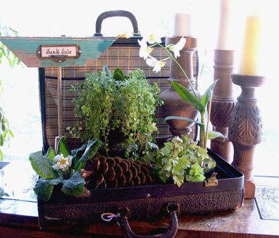 Vintage Suitcase To Planter Tray