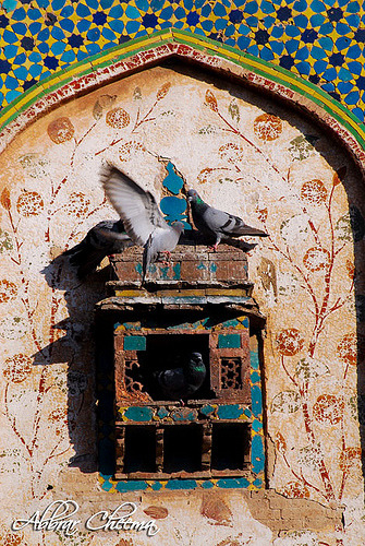 Pigeon nest on the Painted wall Lahore fort (by Abbrar Cheema) Lahore Fort