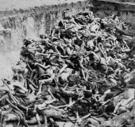 Day 08 — A photo that makes you angry/sad BERGEN-BELSEN MASS GRAVE [HOLOCAUST] This is a photo of one of more than hundred mass graves that existed in the Holocaust. This photo makes me extremely sad to see the millions of Jews that were murdered during World War 2, due to one man's hate, who then turn to another man's hate, and so on. This shows the effect HATE has in society. Hate, that costed the lives of more than 6 million Jews.