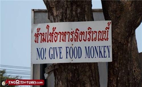 Oh I am supposed to give monkeys to food?  And here I've been giving food to monkeys.